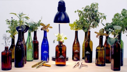 World's Smallest Garden lets you recycle old bottles into adorable hydroponic planters