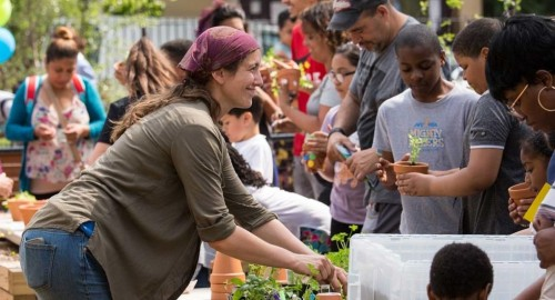 Bronx community garden transformed with sustainable improvements
